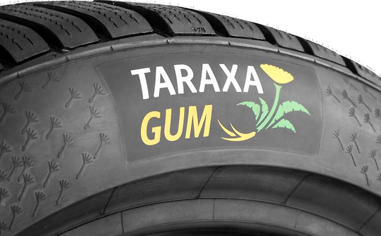 Taraxagum Lab Anklam